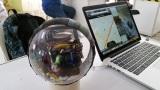 IDA Labs: amphibious remote control ball prototype